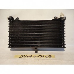 Radiatore olio Oil Cooler Ölkühler Suzuki B-King 1340 08 10