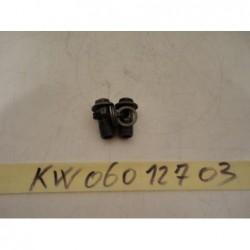 Bulloni Tubi Radiatore olio Bolt oil cooler tubes Kawasaki Gpz 900 84 85