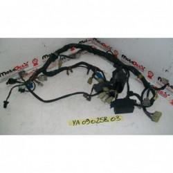 Impianto elettrico electric system Yamaha YZF 1000 r thunderace 96 03